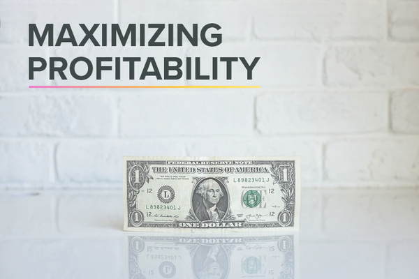HOW TO MAXIMIZE PROFITABILITY FOR DIGITAL ADVERTISING: PREPARING FOR THE FUTURE OF MARKETING